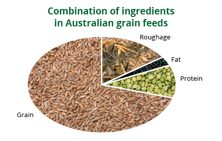 ingredients grain feed